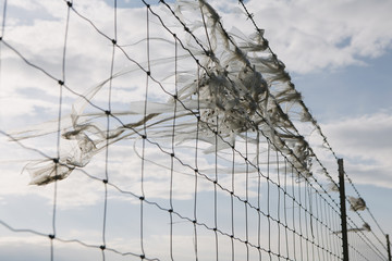 A shredded plastic bag caught on barbed wire fence