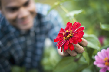 A man in a field of flowers, holding a red petalled flower, on an organic farm.