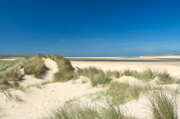 Sand dunes at the coast