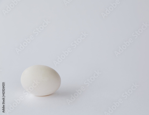 A single free range organic egg with a white shell against a white background.