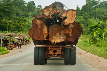 Truck loaded with rainforest timber, Atobiase, Ghana