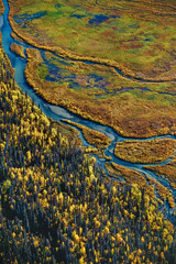 An aerial view over wetlands in the Tana Valley, Wrangell-St. Elias National Park, Alaska, USA