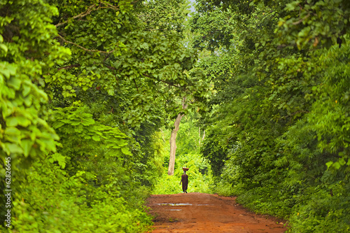 Woman walking through forest, Boabeng-Fiema Monkey Sanctuary, Ghana