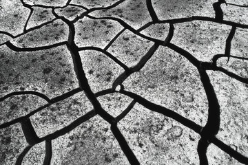 Cracked mud in drought conditions in the Okavango Delta, Botswana