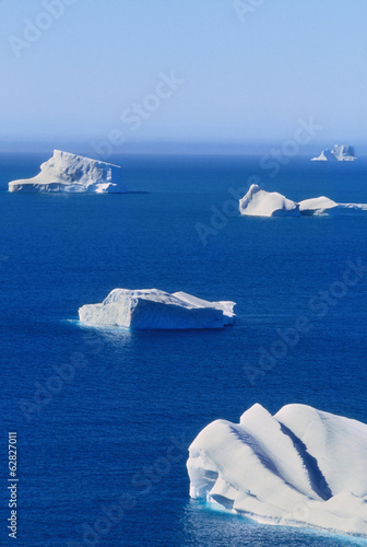 Icebergs floating on calm blue seas off the shore of South Georgia Island, Falkland Islands
