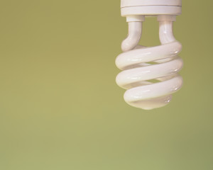 An energy efficient compact fluorescent light bulb, a CFL, with a curled element. A light green background.