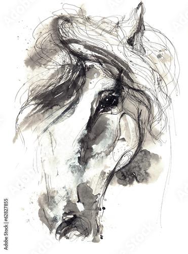 horse - 62827855