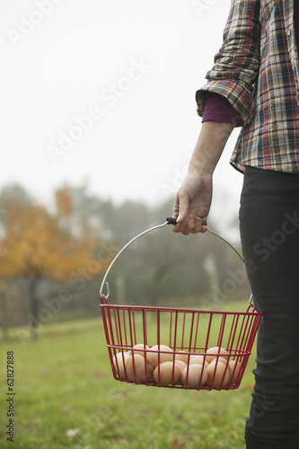 Organic farm. A woman carrying a clutch of freshly laid hen's eggs in a wire basket.