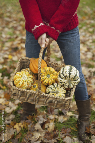 A woman in a red knitted jumper holding a basket of vegetables, gourds and squashes. Organic farming.