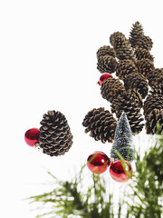 Still life. Green leaf foliage and decorations. A pine tree branch with green needles. Christmas decorations. Pine cones and small red shiny ornaments.