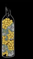 botiglia uva