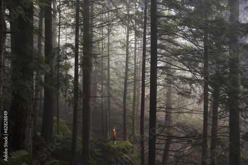 A man stands on a mossy rock overlooking a thick forest on a foggy morning near North Bend, Washington.
