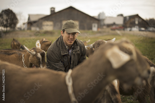 A small organic dairy farm with a mixed herd of cows and goats.  Farmer working and tending to the animals.
