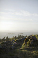 View over the landscape of Utah, from a wooded hillside, to an expanse of water, and islands offshore.