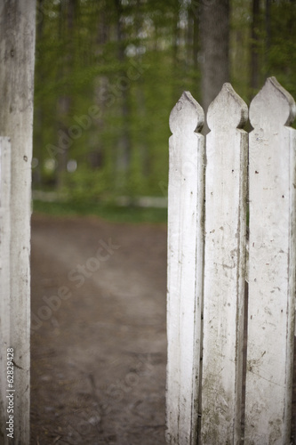 A white picket fence, with an open garden gate.
