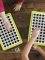 View from overhead of two children planting seeds into a seed growing tray.