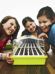 Three children leaning excitedly over a freshly planted seed tray with a cover on a table.