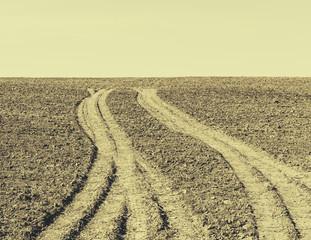 Fresh tire tracks on farmland, near Pullman