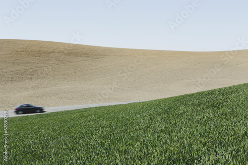 Car driving on road, surrounded by farmland and lush, green field of wheat, near Pullman