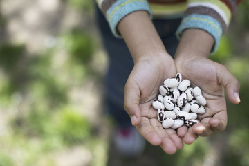 A New York city park in the spring. A young boy holding out a handful of beans.