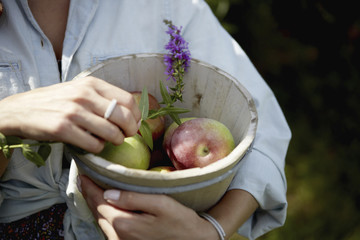 A woman holding a pottery bowl with fresh picked apples and a small foxglove flower.