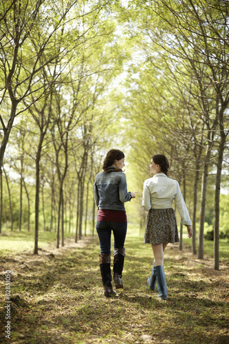 Two friends walking along a path through an avenue of trees.