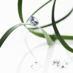 Thin strap green leaves or leaf strands with a small glass bead or gem, with cut facets reflecting the light.