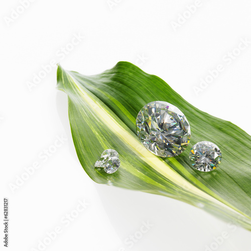 A leaf with a stripe marking with small glass reflective objects, or gems, gem cut sparkling.
