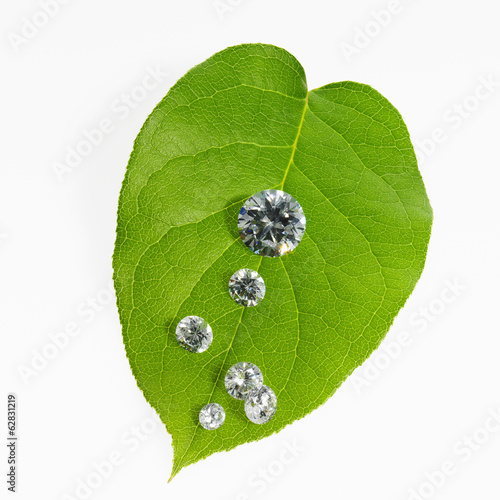 A leaf with vein pattern with small glass reflective objects, or gems, gem cut sparkling.