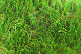artificial grass astroturf closeup background poster