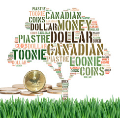 Canadian growing savings concept with tag cloud on green grass w