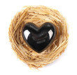 Decorative heart in nest, isolated on white