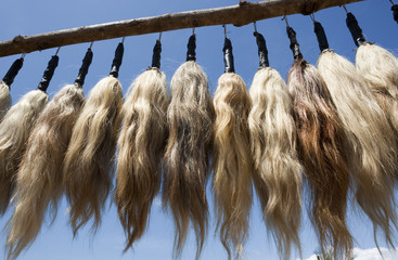 Plumes of human hair hanging from a frame against a blue sky.