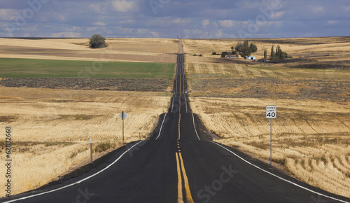 A straight rural road through crops fields, stretching into the distance at  Palouse, Washington