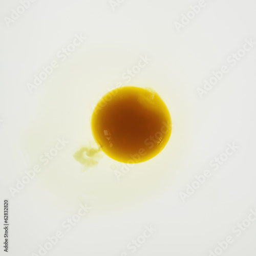 Organic egg on white background