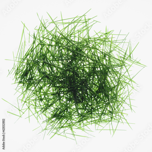 Pile of organic wheatgrass on a white background