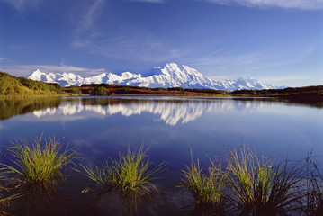 Mount McKinley in Denali National Park, Alaska reflected in Reflection Pond.