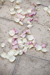 Fresh organic confetti, natural pink dried rose petals on the ground. Traditional wedding custom.