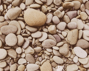 A heap of polished pebbles and small flat stones in Olympic national park.