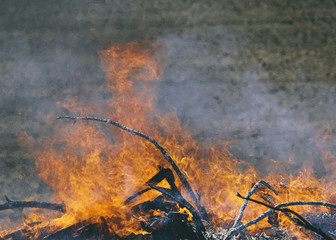 Flames and smoke rising from a heap of wood burning fiercely in a field near Pullman, Washington, USA
