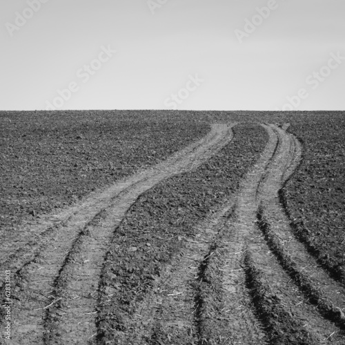 Fresh tire tracks on farmland, near Pullman