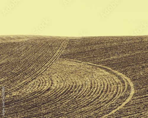 Ploughed earth furrows, patterns on the surface of the soil on farmland near Pullman, Washington, USA