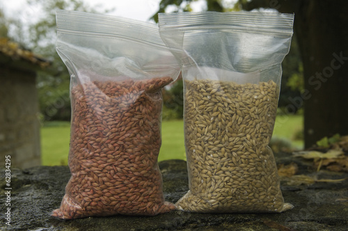 Two bags of seed wheat, one with and one without seed dressing treatment.