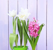 Beautiful tulips and hyacinth flower on wooden background