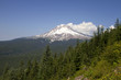 Mount Hood View Along Hiking Trail