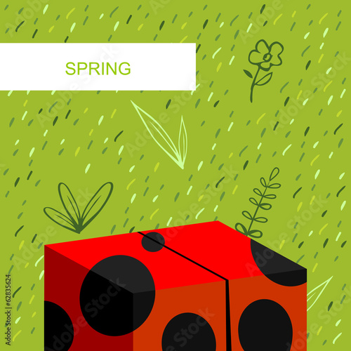 Spring background, ladybug