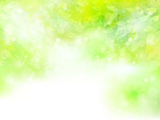 葉 植物 風景
