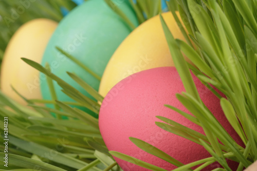 easter eggs hidden in grass close up photo