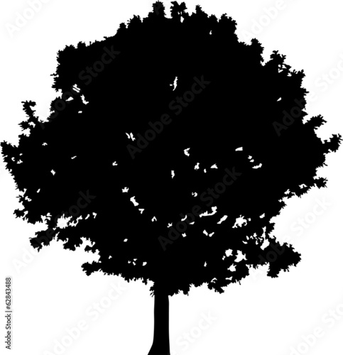small black oak tree silhouette on white