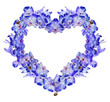 heart from isolated blue orchid flowers